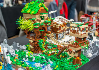 lego clearwater - 142
