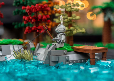 lego clearwater - 22