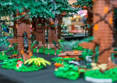 lego clearwater - 40