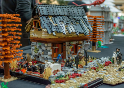 lego clearwater - 54