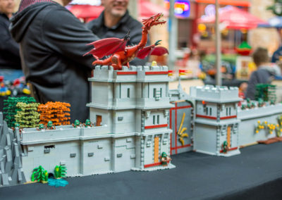lego clearwater - 59
