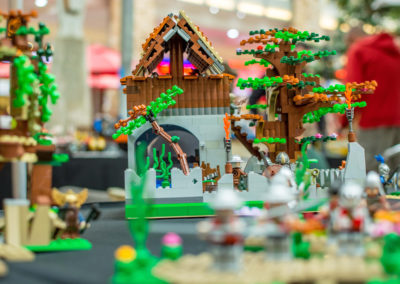 lego clearwater - 65